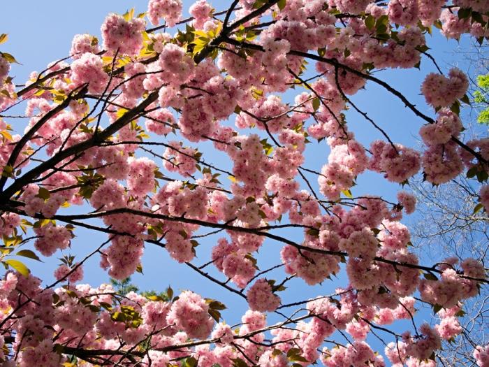 Spring is back!!