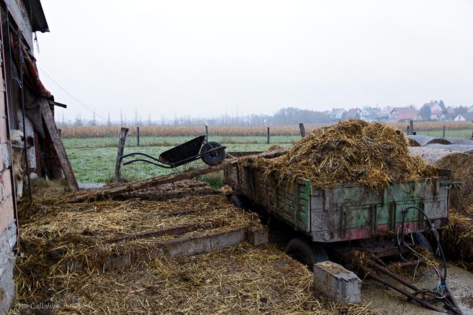 Komarom Hungary Farm Life